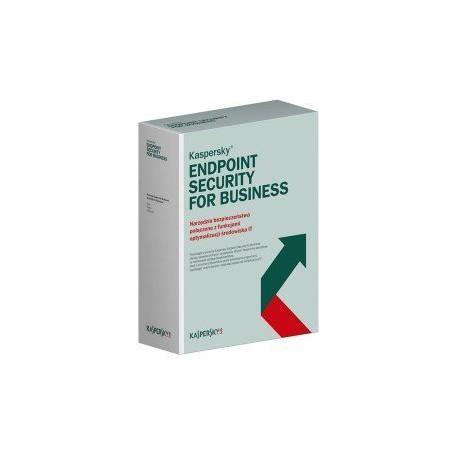 zakup pierwszy Kaspersky Endpoint Security for Business Select Pracownia komputerowa na 100 PC + Serwery dla Szkół cena